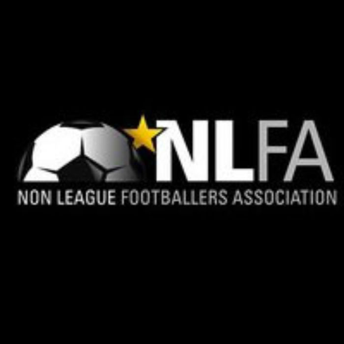 nlfa newsletter logo